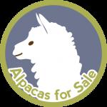 alpaca-badge